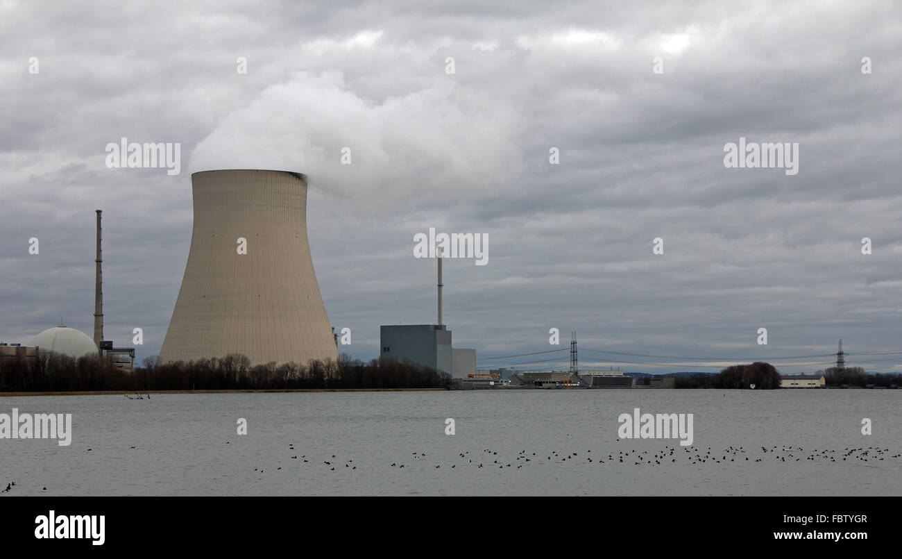 ducks and atomic power plant Ohu - Stock Image
