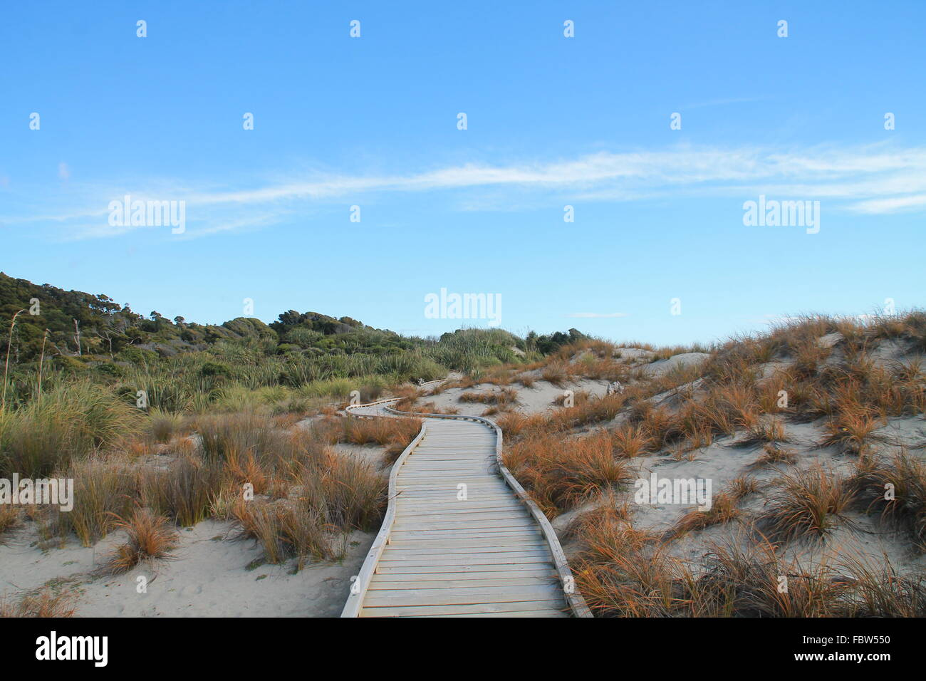 Beachpath, New Zealand Stock Photo
