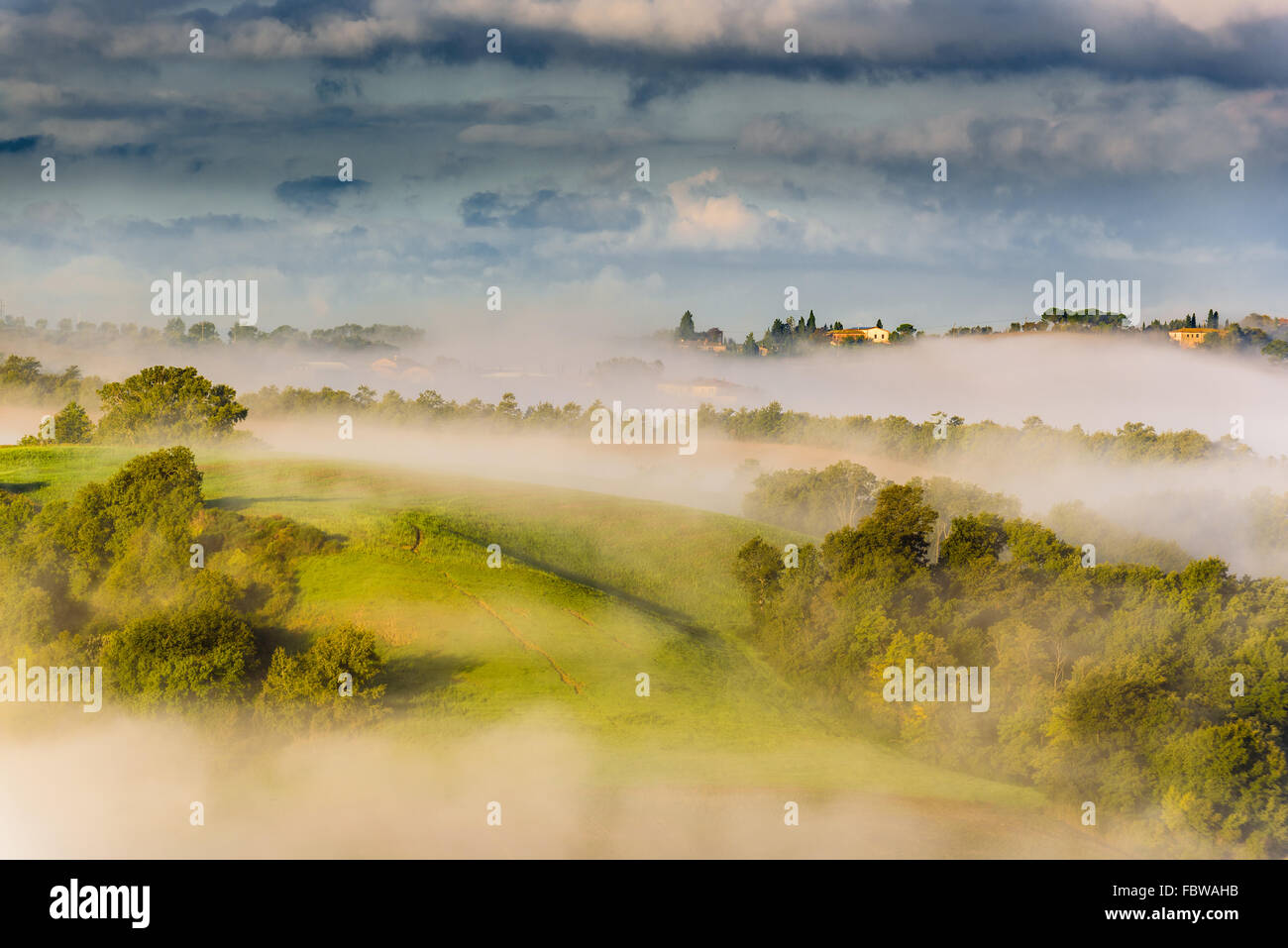 Trees and orchards on the Italian fields. Tuscany autumn day. - Stock Image