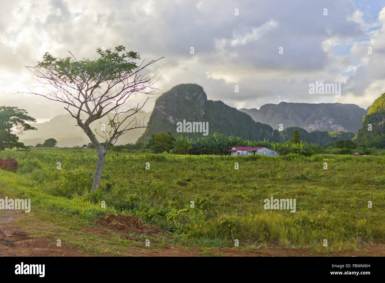 Sunset in the vally of Vinales - Stock Image