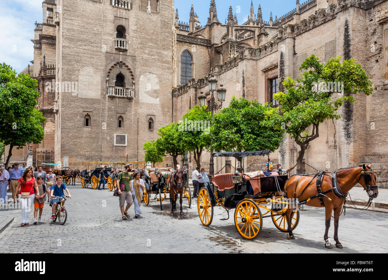 Spain, Andalusia, Province of Seville, Seville, horse-drawn carriages awaiting fares at Giralda Tower of Seville - Stock Image
