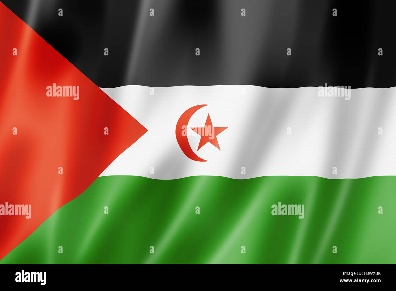 Sahrawi flag - Stock Image