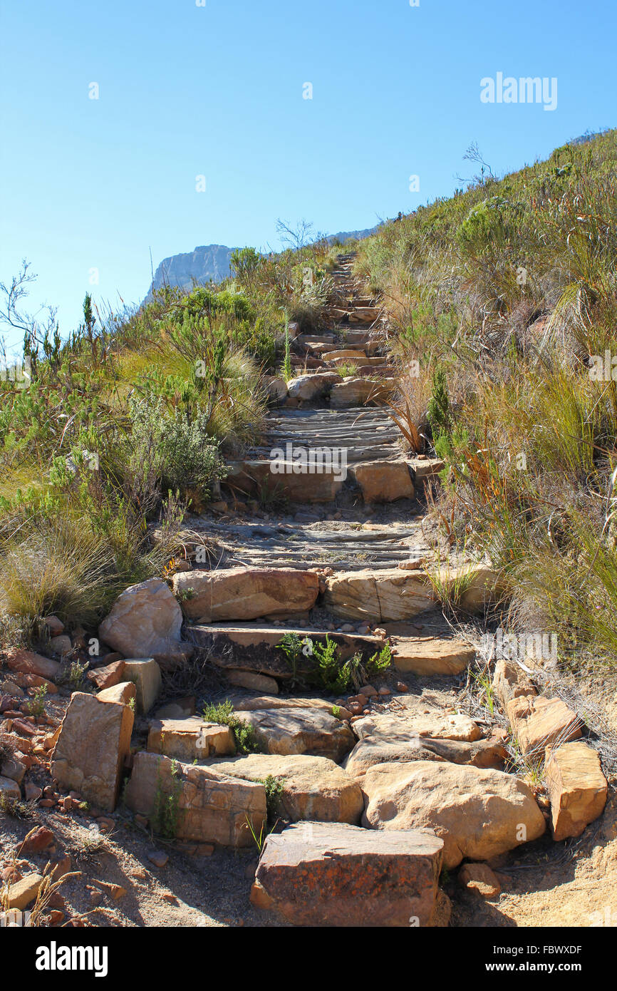 Hiking Path on table Mountain, South Africa - Stock Image
