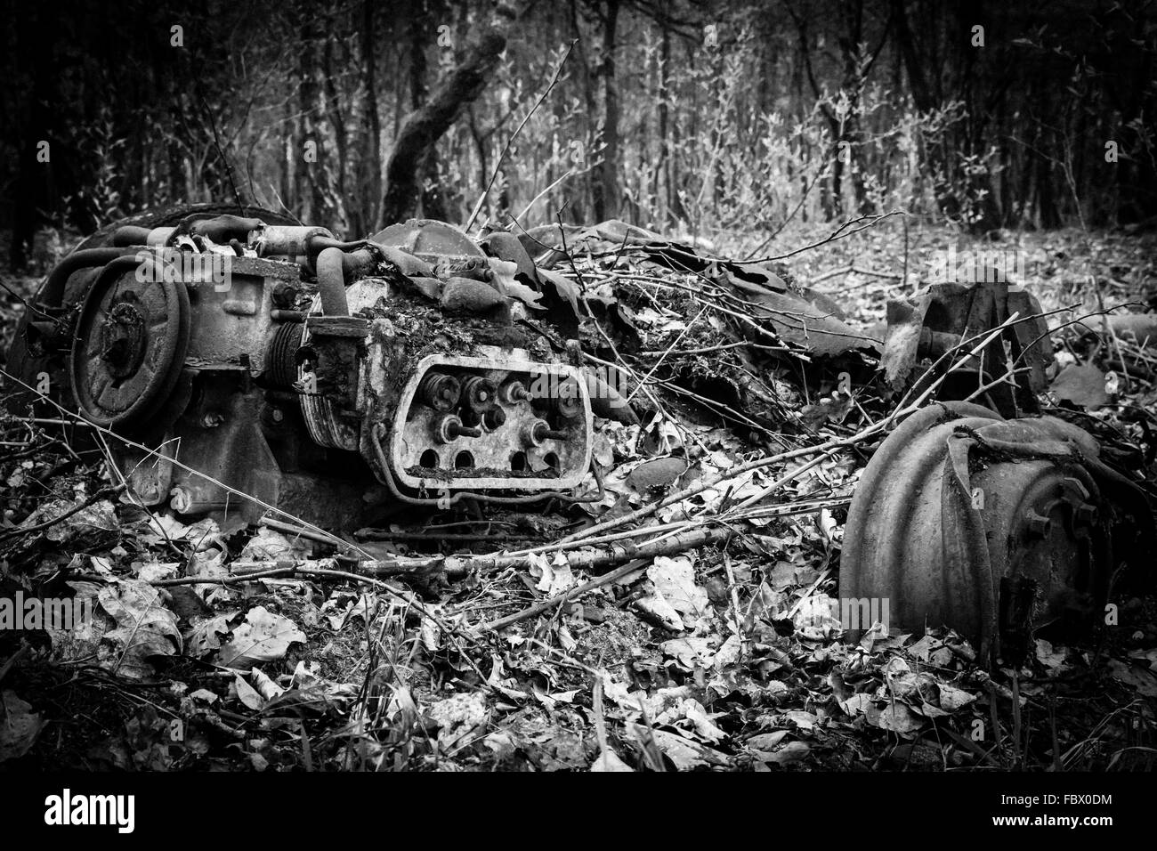 Wreck of a car in the woods - Stock Image