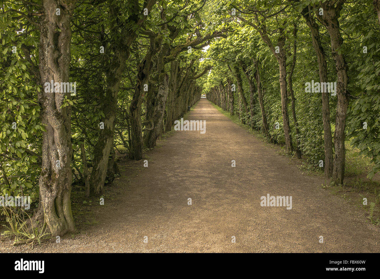 Hermitage in Bayreuth - arbor - Stock Image