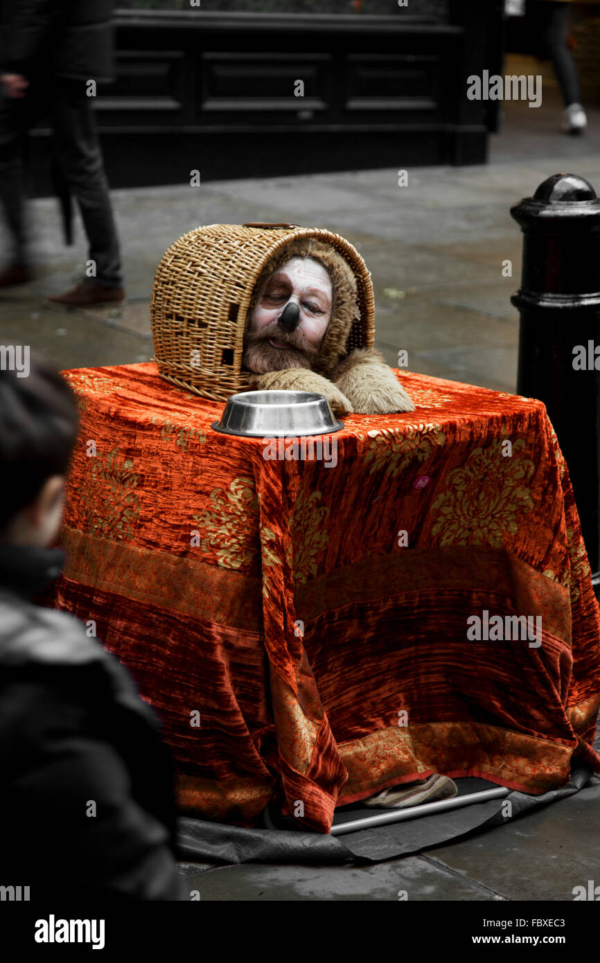 Man's face in a cat basket busking in London - Stock Image