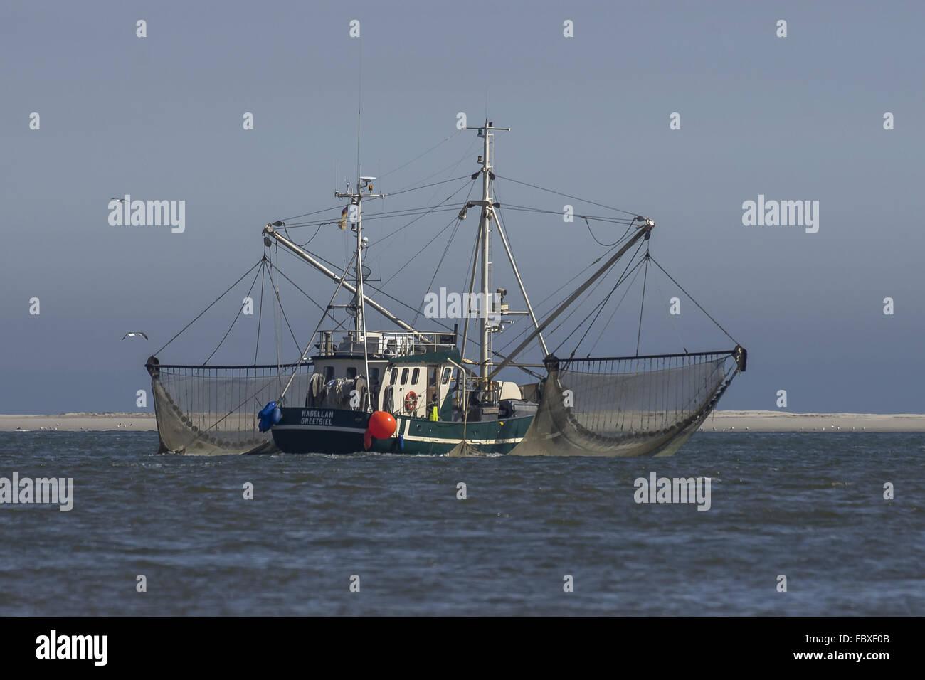 Fishing on the sandbar - Stock Image