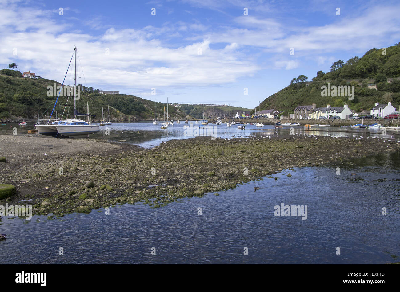 Fishguard - Stock Image