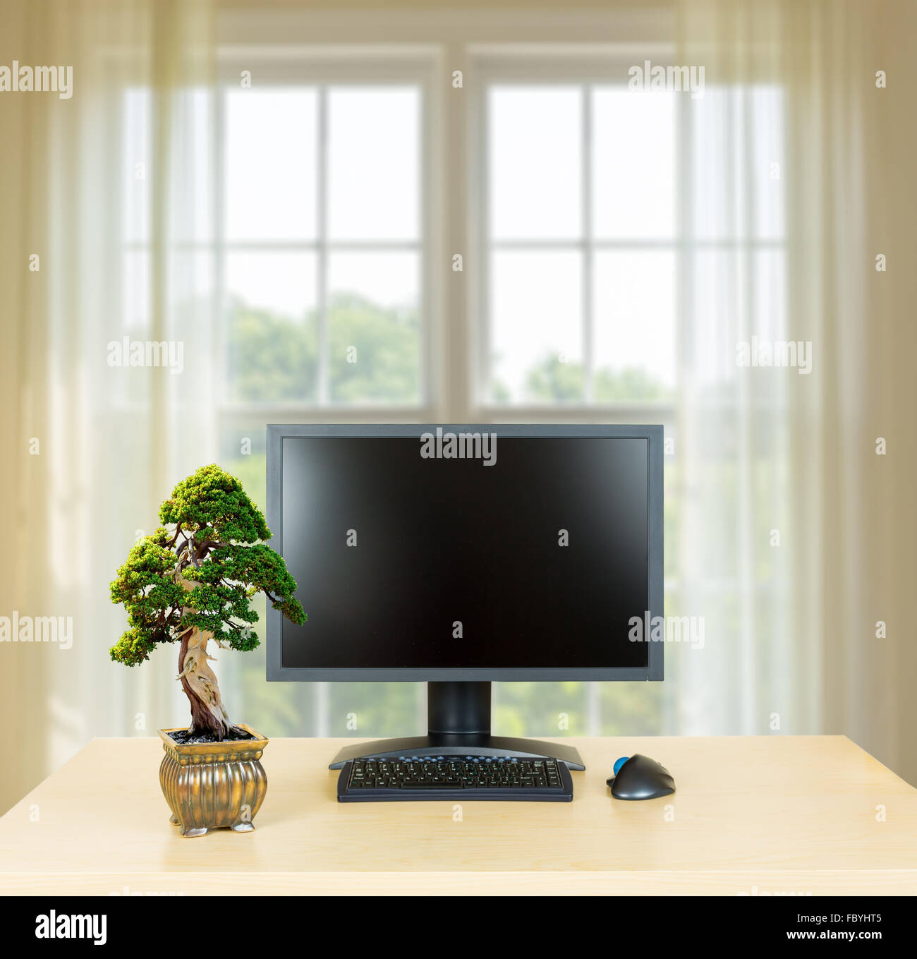 bonsai tree for office. Small Bonsai Tree On Plain Office Desk With Monitor For