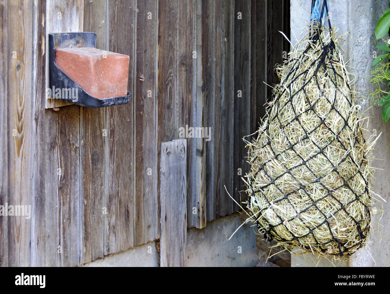 red salt lick and fodder net for horses Stock Photo