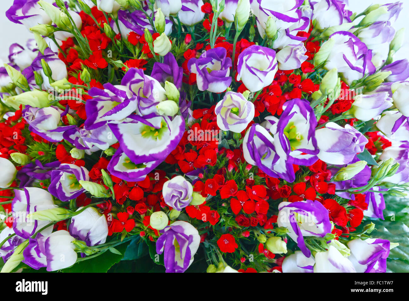 Big wonderful flowers bouquet stock photo 93469187 alamy big wonderful flowers bouquet izmirmasajfo