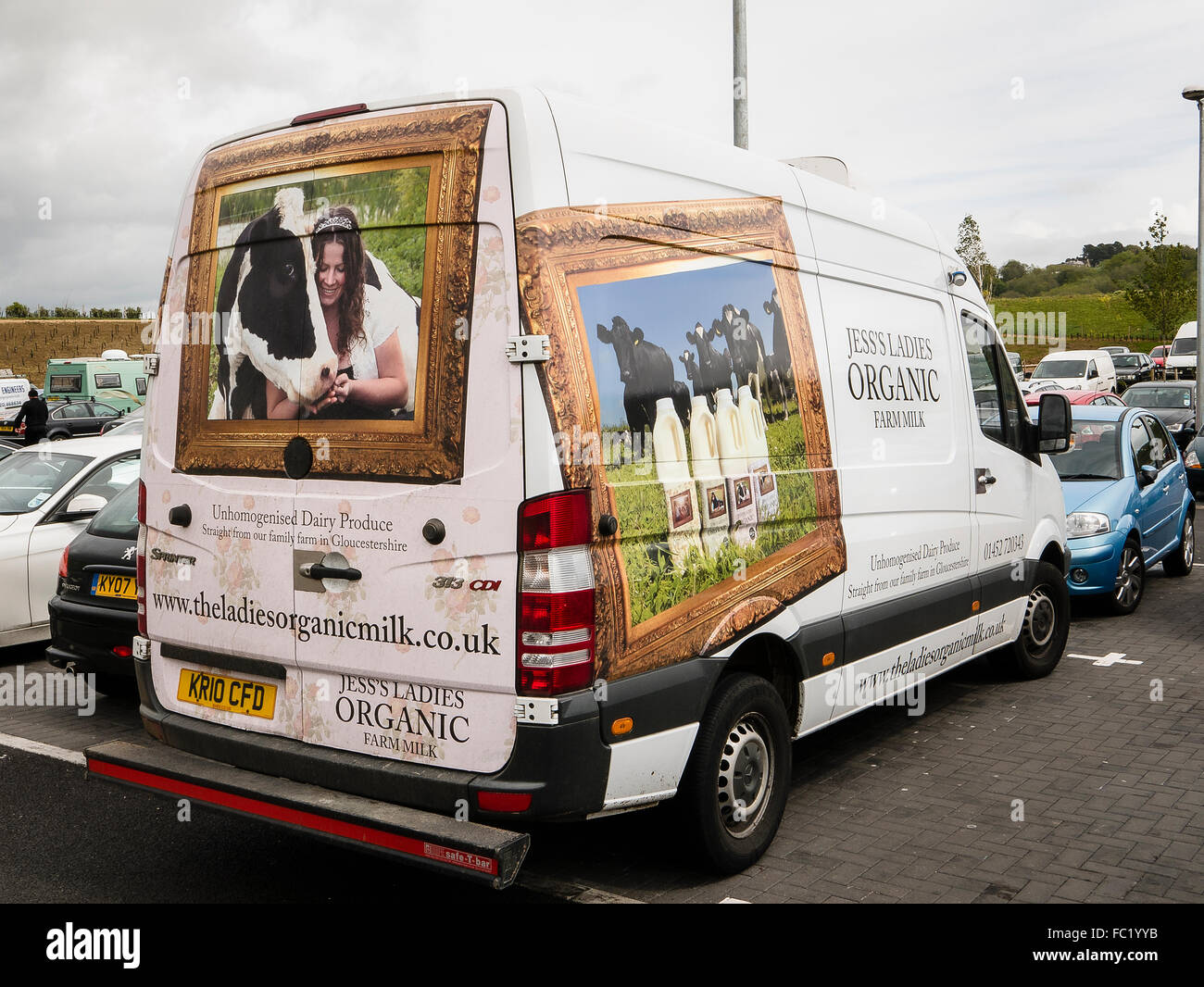 Rear and side of white van delivering organic milk to a customer showing painting illustrating provenance - Stock Image