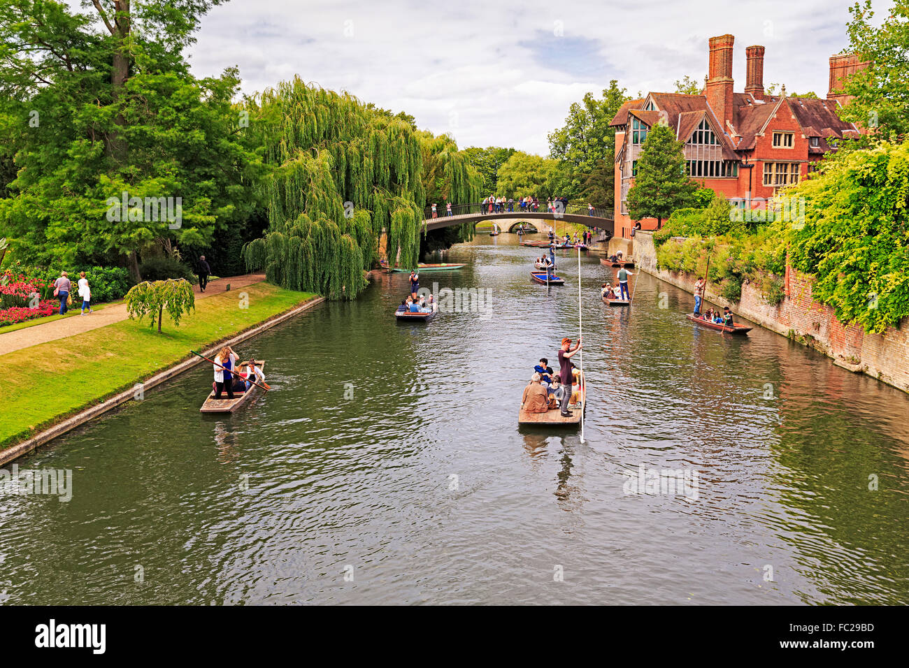 Punting on the River Cam, Cambridge, Cambridgeshire, England, United Kingdom - Stock Image