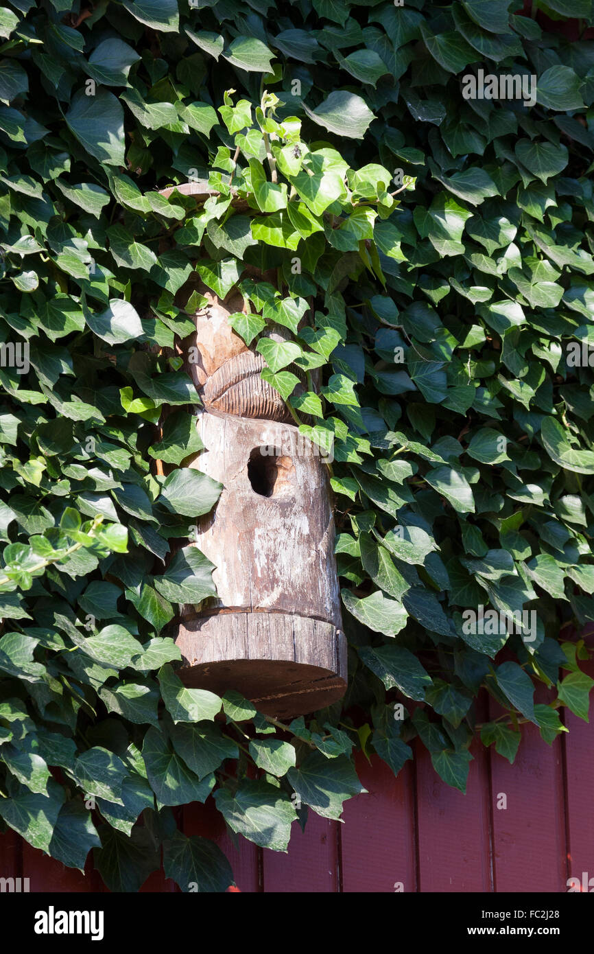 nest box, birdhouse, nesting box, Nistkasten, Nisthilfe, Vogelschutz, Meisenkasten, Vogelkasten, Vogelnistkasten - Stock Image