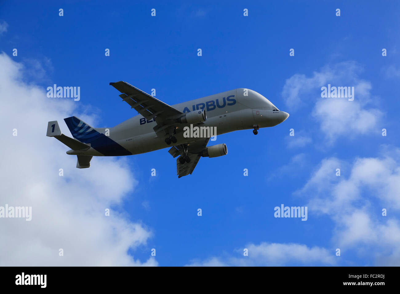 BELUGA Airbus Transpotation Airplane ( A 300-600 ST) Finkenwerder,  Hamburg, Germany, Europe - Stock Image