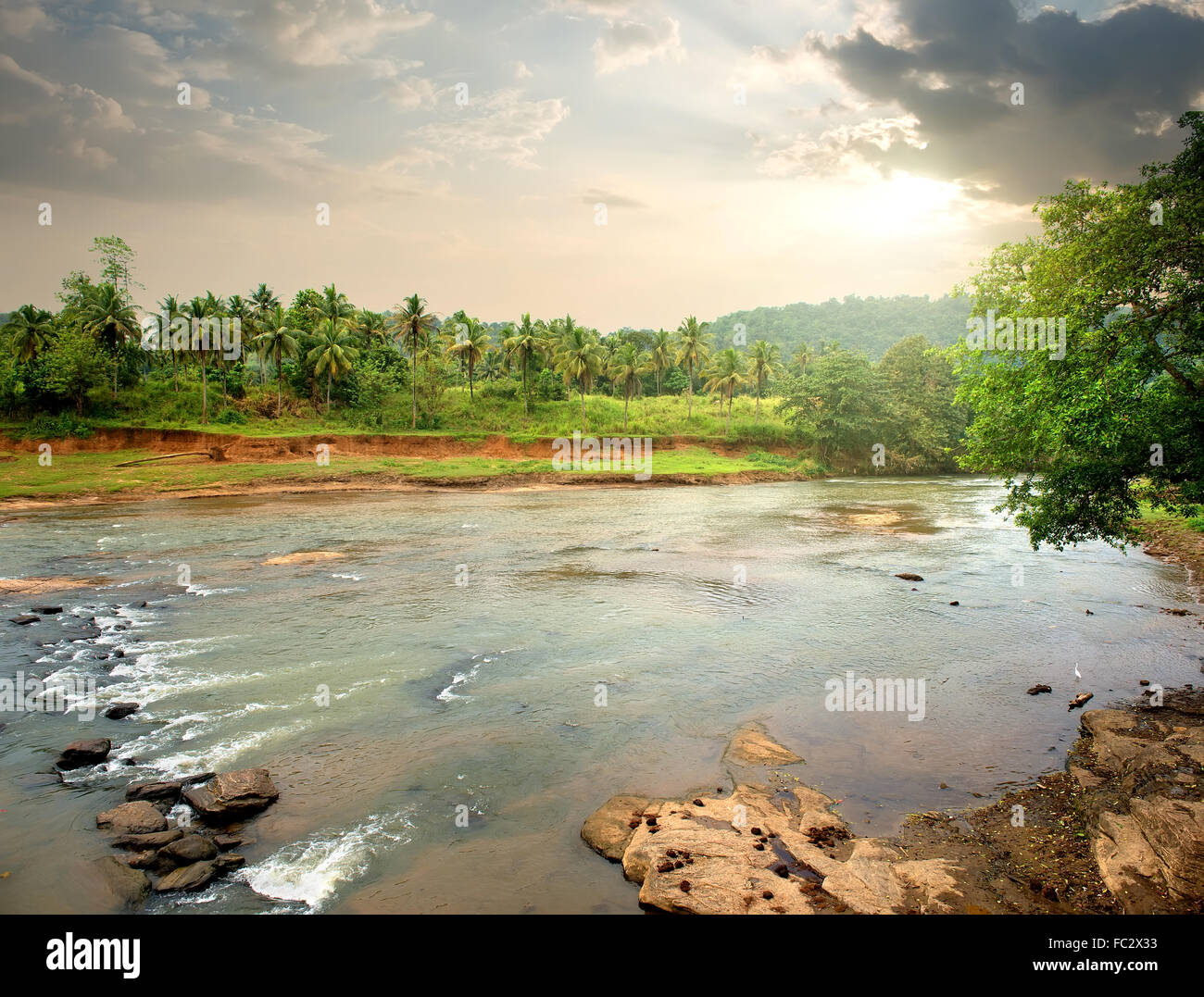 River in jungle of Sri Lanka at sunset - Stock Image