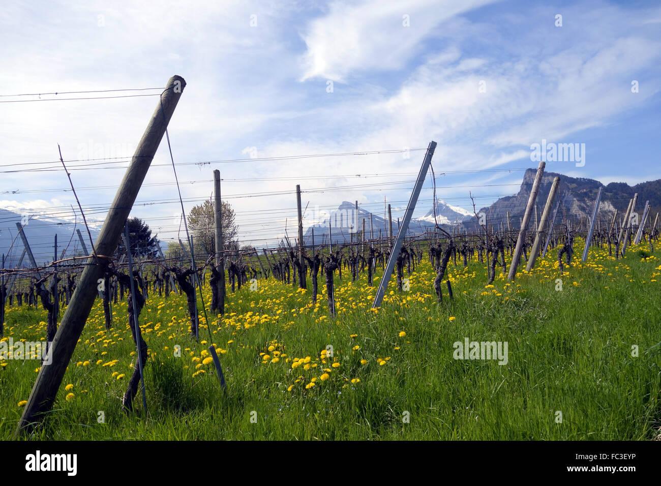 grisons switzerland Stock Photo