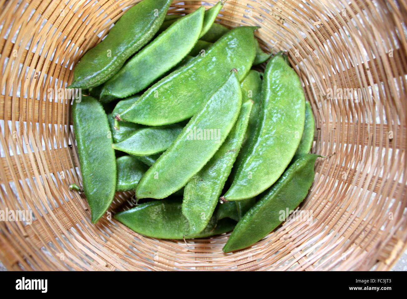 Dolichos lablab, vegetable vine crop with white flowers, unopened pods in a basket, used as vegetable, ripe seeds - Stock Image