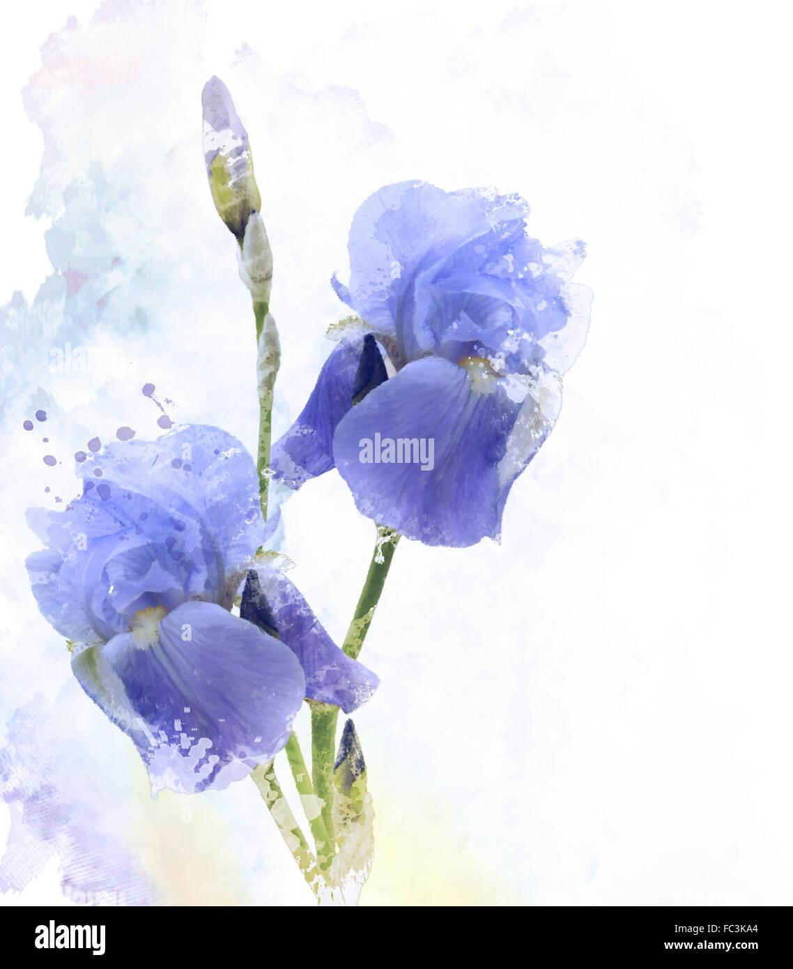 Purple watercolor flowers stock photos purple watercolor flowers iris flowers watercolor stock image izmirmasajfo