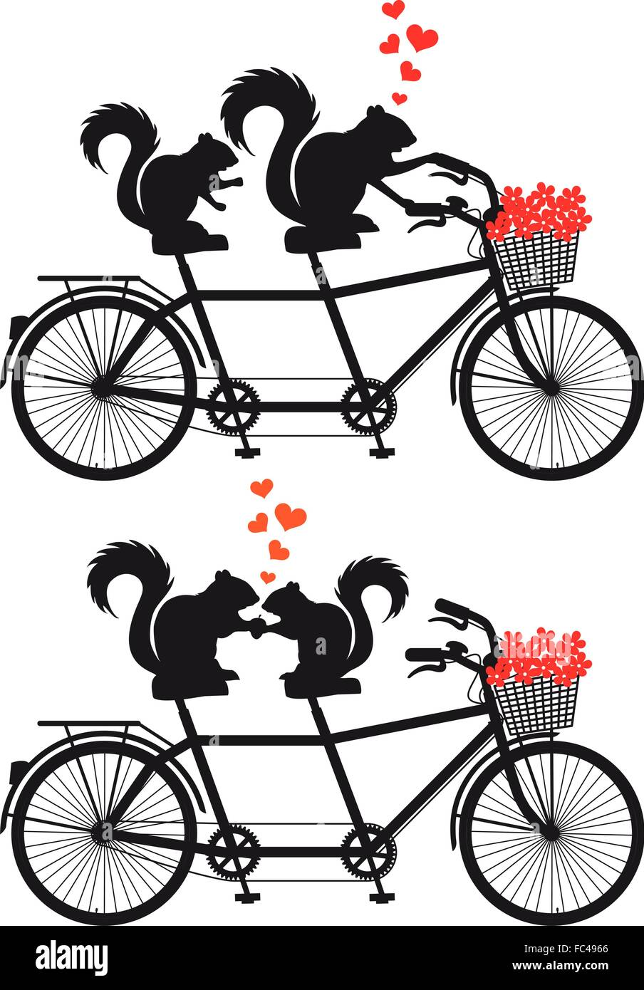 Squirrel on tandem bicycle, vector illustration - Stock Image