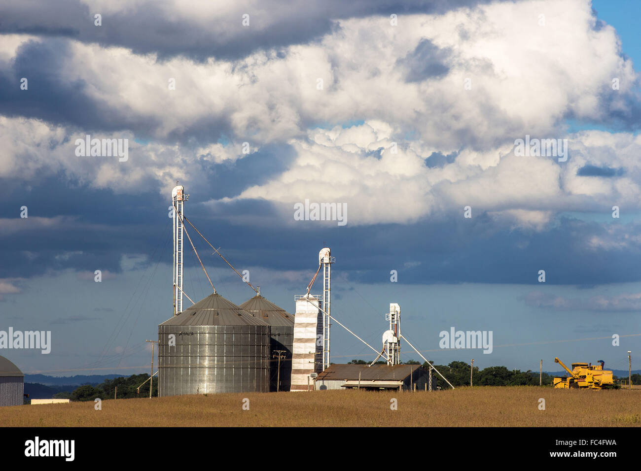 Combine harvesting soybeans next to the silo for storing grain Stock Photo