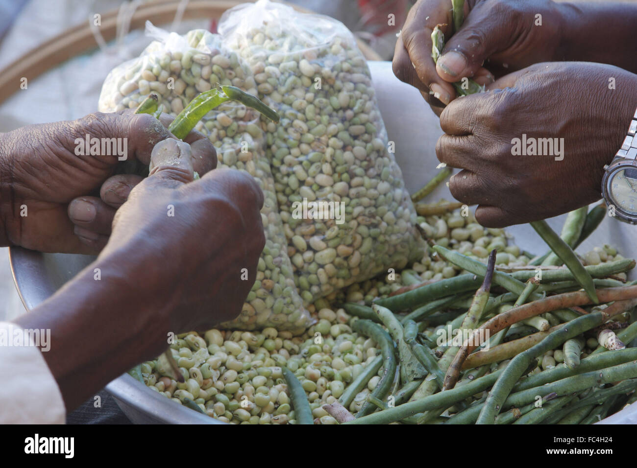 Sellers thrashing bean-picker at the fair of local products in the Municipal Market - Stock Image
