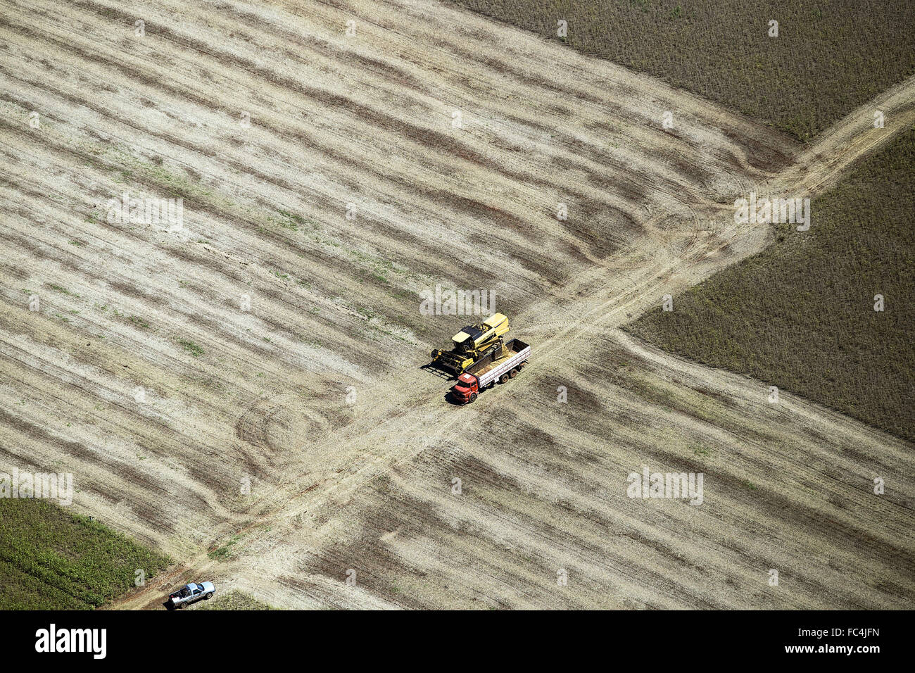 Aerial view of transgenic soy in grain truck unloading - Stock Image