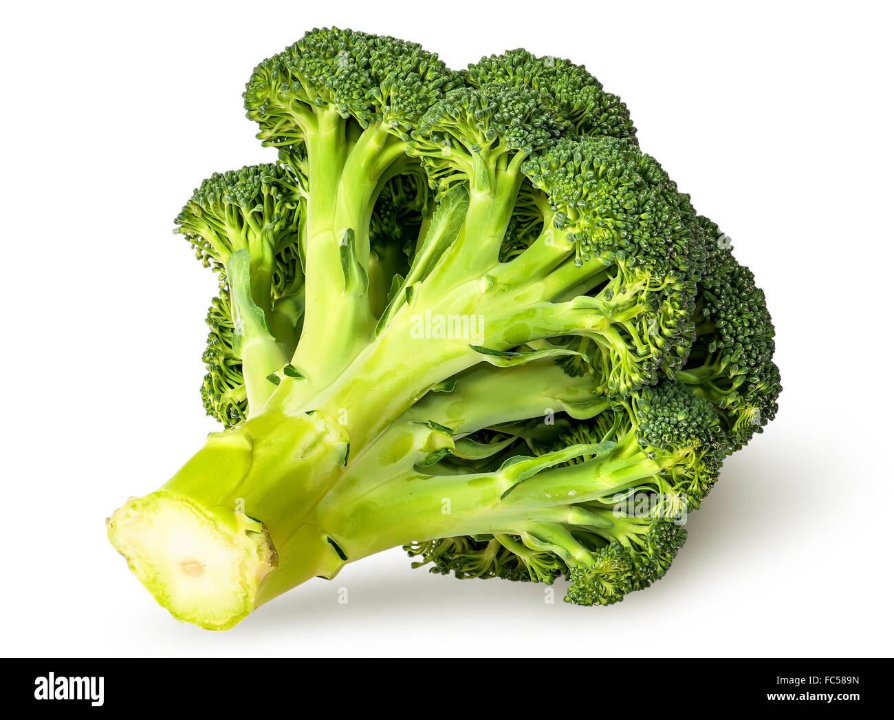 Large inflorescences of fresh broccoli bottom view isolated on white background Stock Photo
