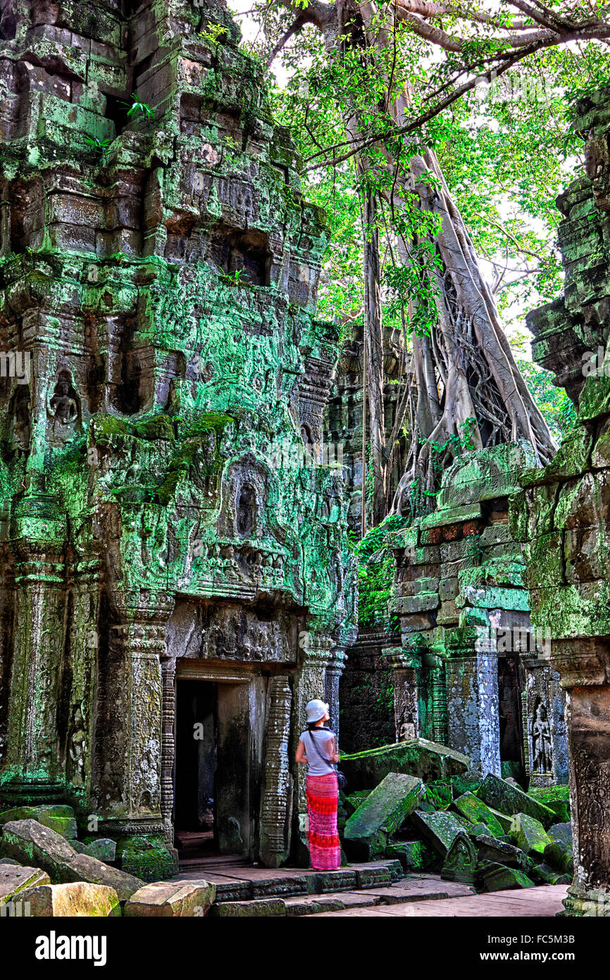 Ta Phrom Temple and gigantic trees and roots - Stock Image