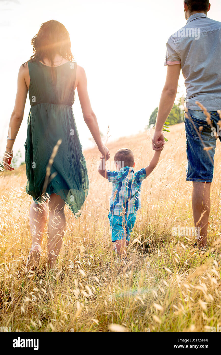Parents Walking With Young Son in Field, Rear View - Stock Image