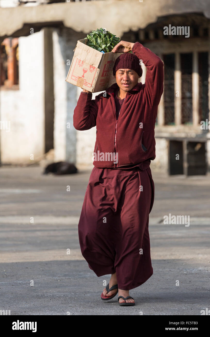 Monk Carrying Vegetables at Buddhist Monastery, Jakar, Bumthang, Central Bhutan, Asia Stock Photo