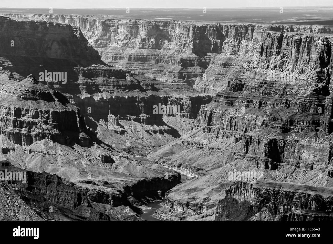 Into Grand Canyon in monochrome - Stock Image