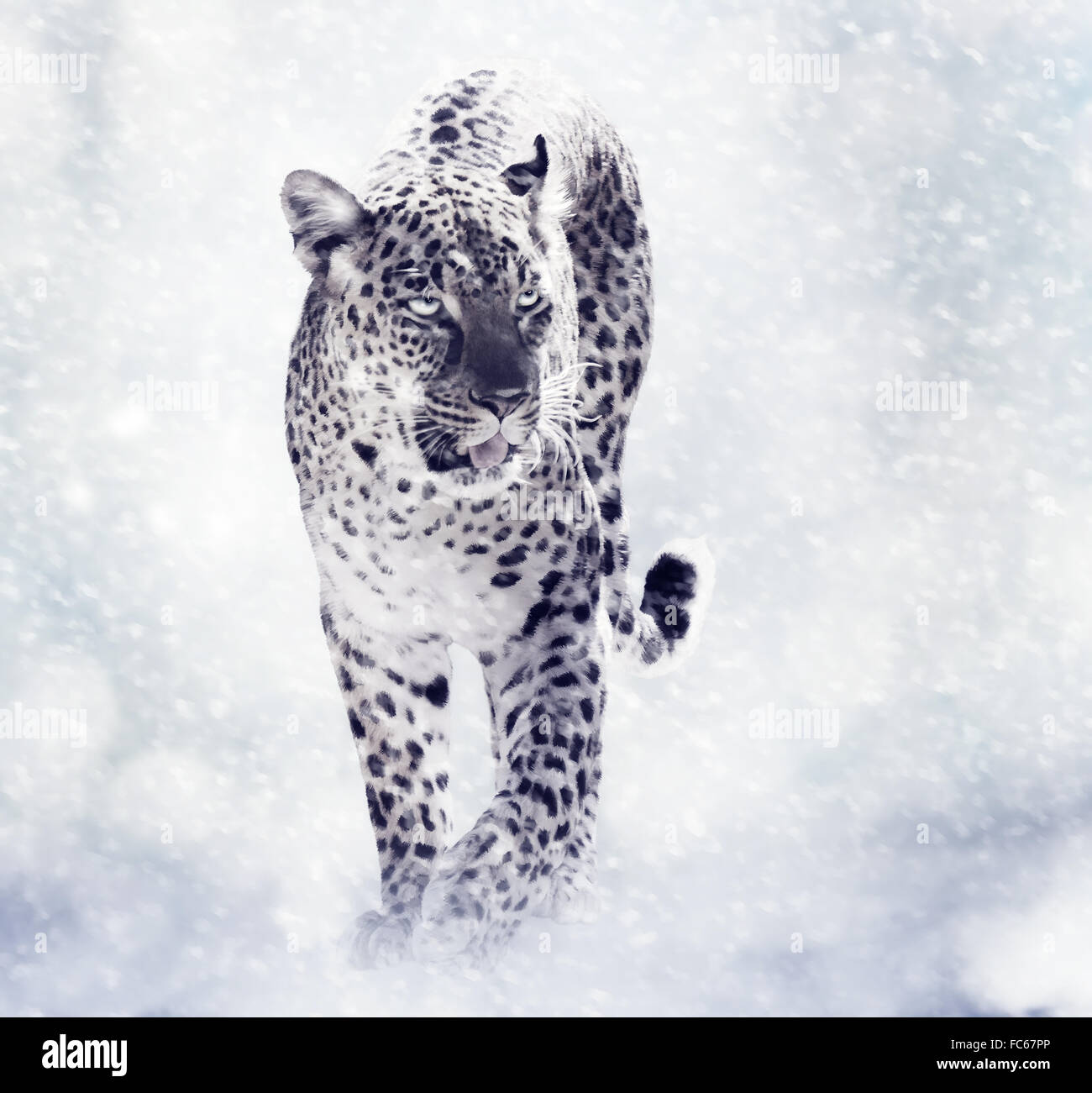 Digital Painting Of Leopard - Stock Image