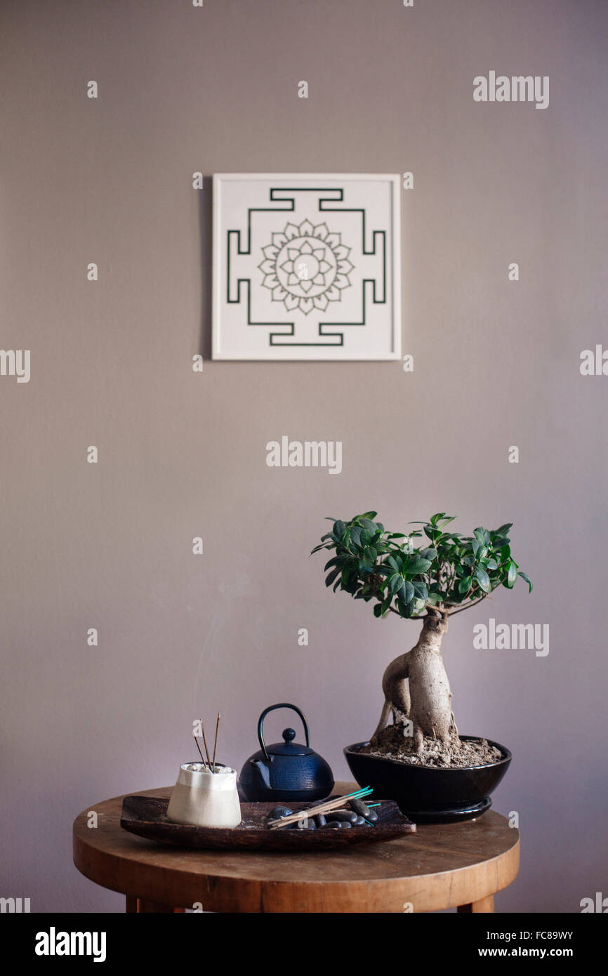 Incense and bonsai tree on table Stock Photo