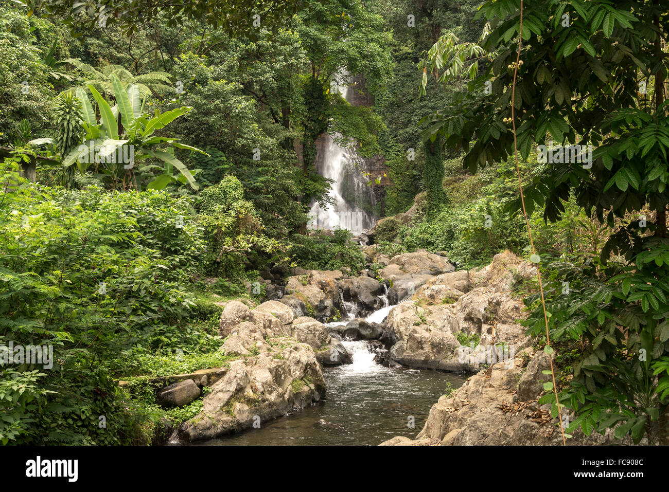 tourists watching the Gitgit Waterfall, Bali, Indonesia Stock Photo