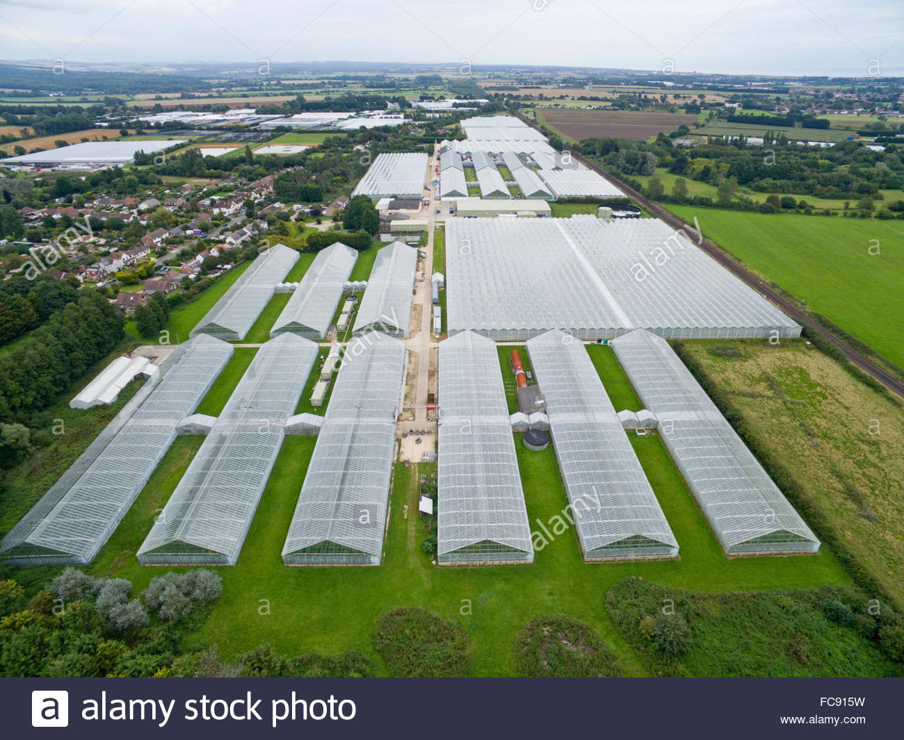 Aerial view of tomato farm greenhouses - Stock Image