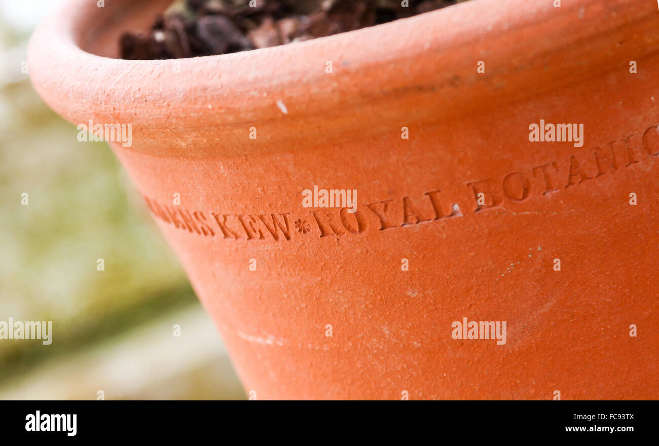 A terracotta plant pot at Kew Gardens Royal Botanical Gardens London England UK - Stock Image