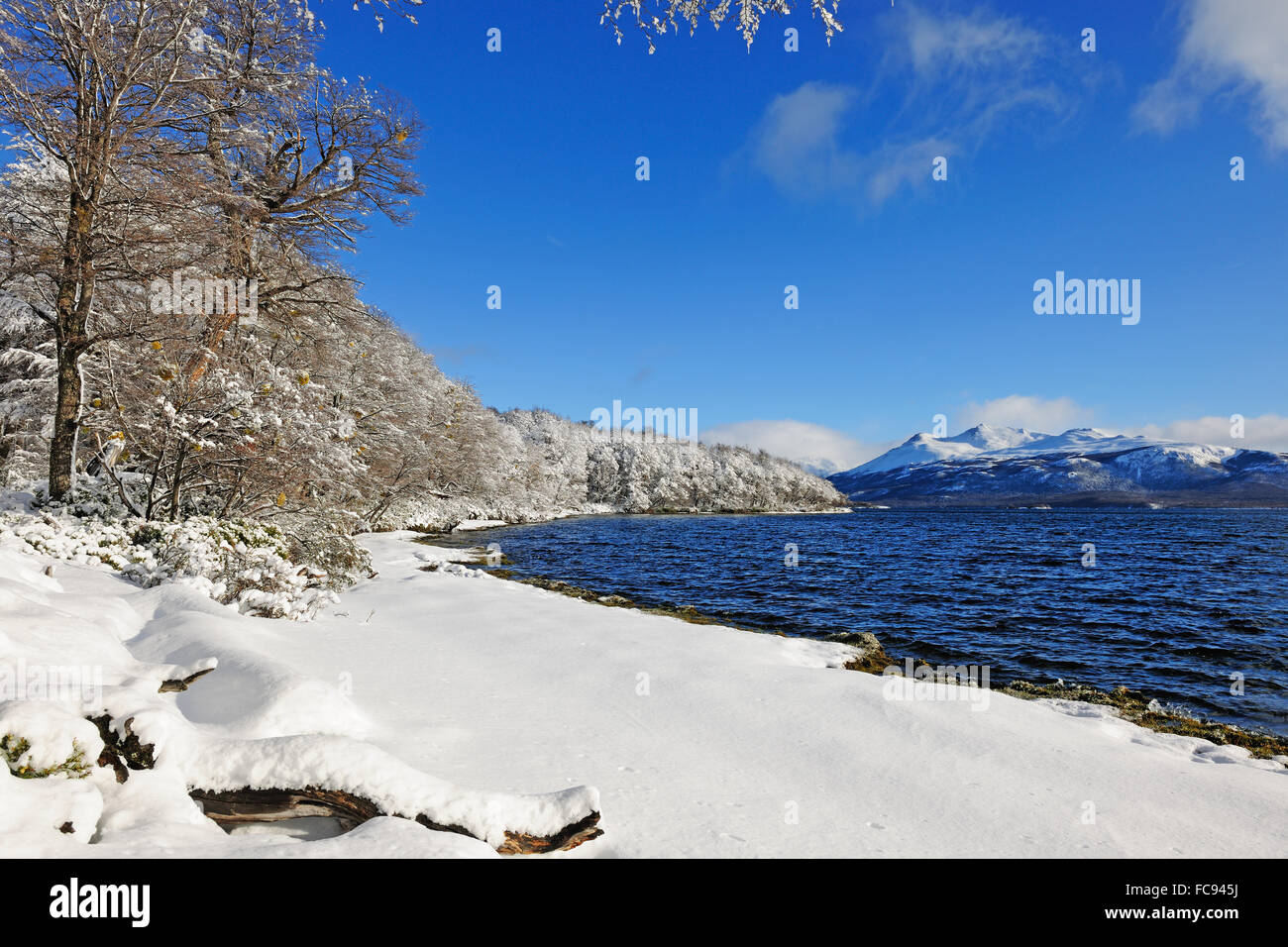 Patagonic landscape, Silver Lake, Patagonia, Argentina, South America - Stock Image