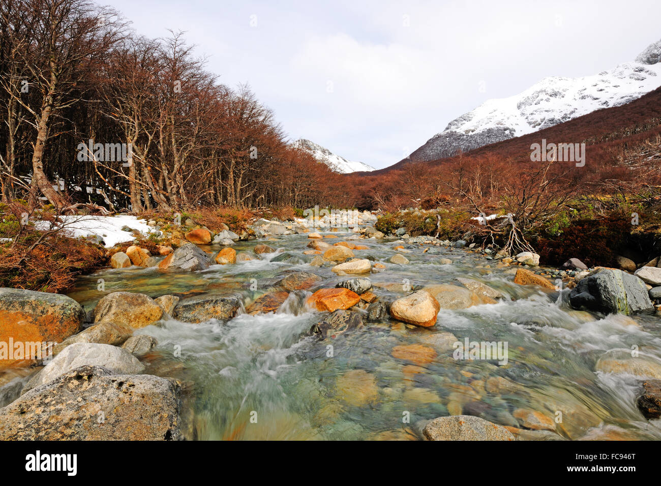 Patagonic landscape, river, Patagonia, Argentina, South America - Stock Image