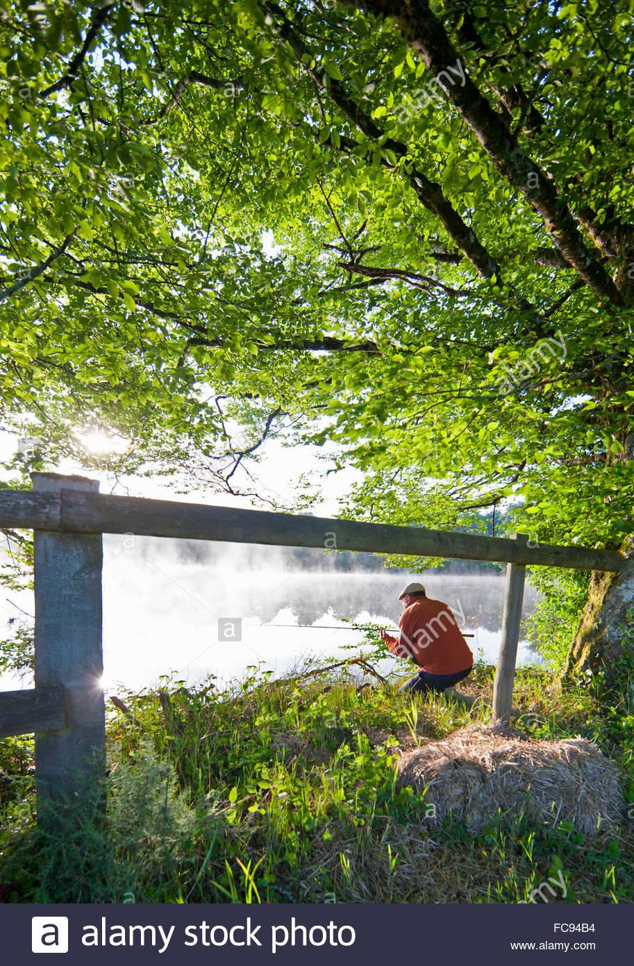 Fisherman carp fishing at lakeside beyond green trees and fence - Stock Image