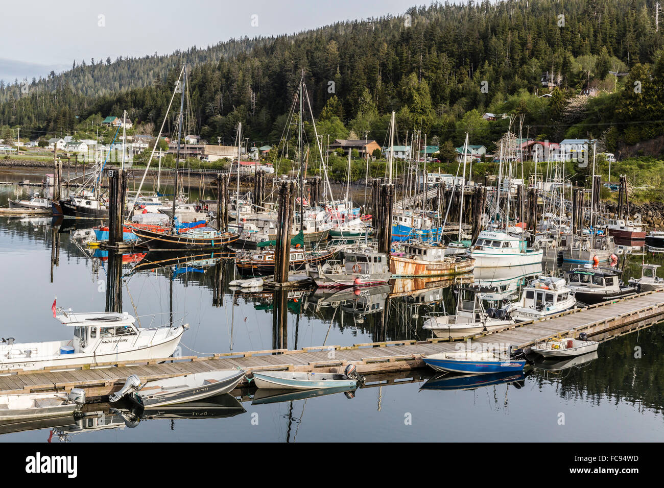 Queen Charlotte City Harbor, Bearskin Bay, Haida Gwaii (Queen Charlotte Islands), British Columbia, Canada, North - Stock Image