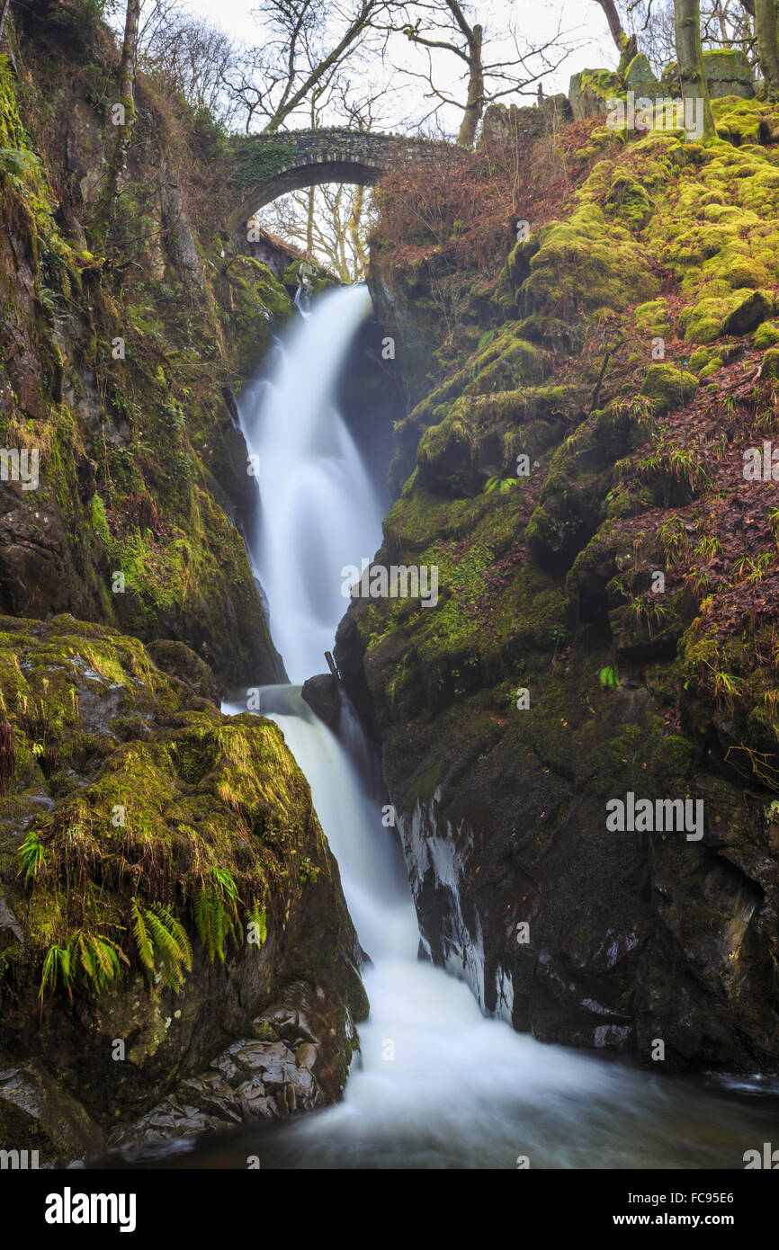 Aira Force waterfall in winter, near Dockray, Lake District National Park, Cumbria, England, United Kingdom, Europe - Stock Image