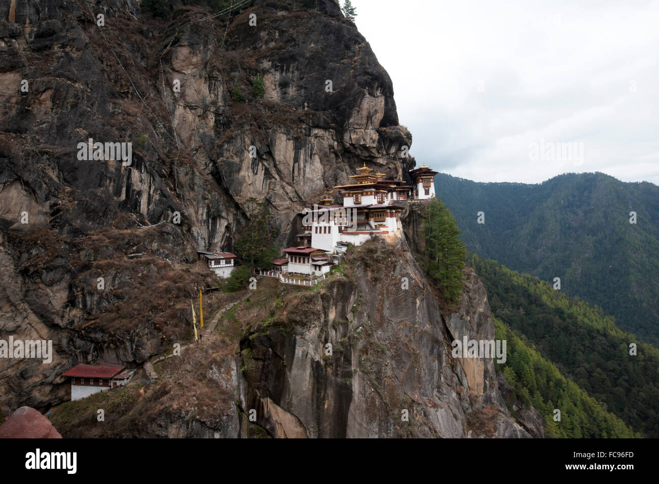 Taktsang Palphug Monastery (Tiger's Nest monastery), a prominent sacred Buddhist site clinging to rock at 3120 - Stock Image