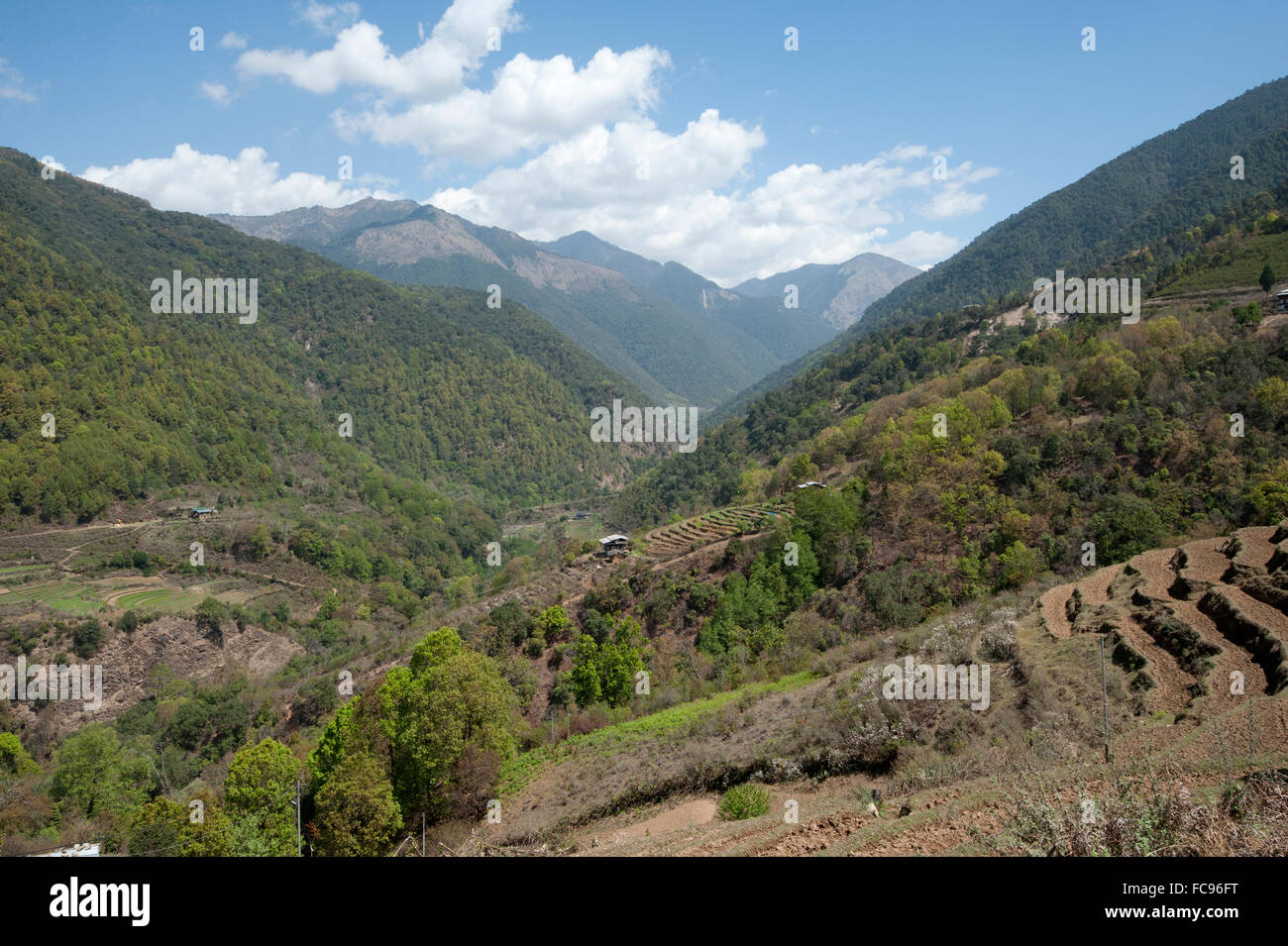 View through farmland clinging to the Himalayan foothills towards China from Wangdue Phodrang district, Bhutan, - Stock Image