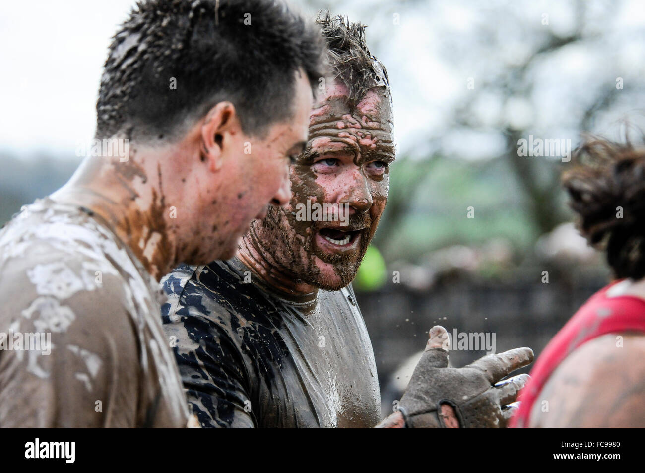 Muddy runners at obstacle course race, UK - Stock Image