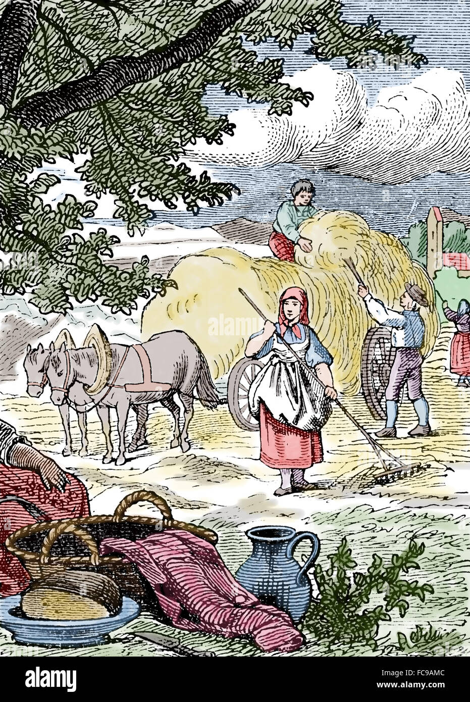 Agriculture. Hay harvest. Raking hay and loading it onto a wagon. Engraving. Color. 1874. - Stock Image