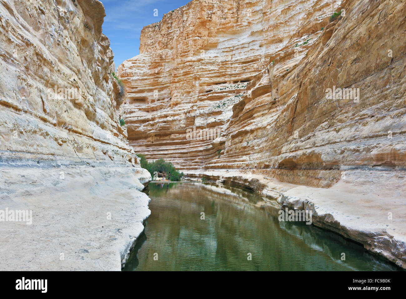 Ein Avdat Canyon, continue the journey Stock Photo