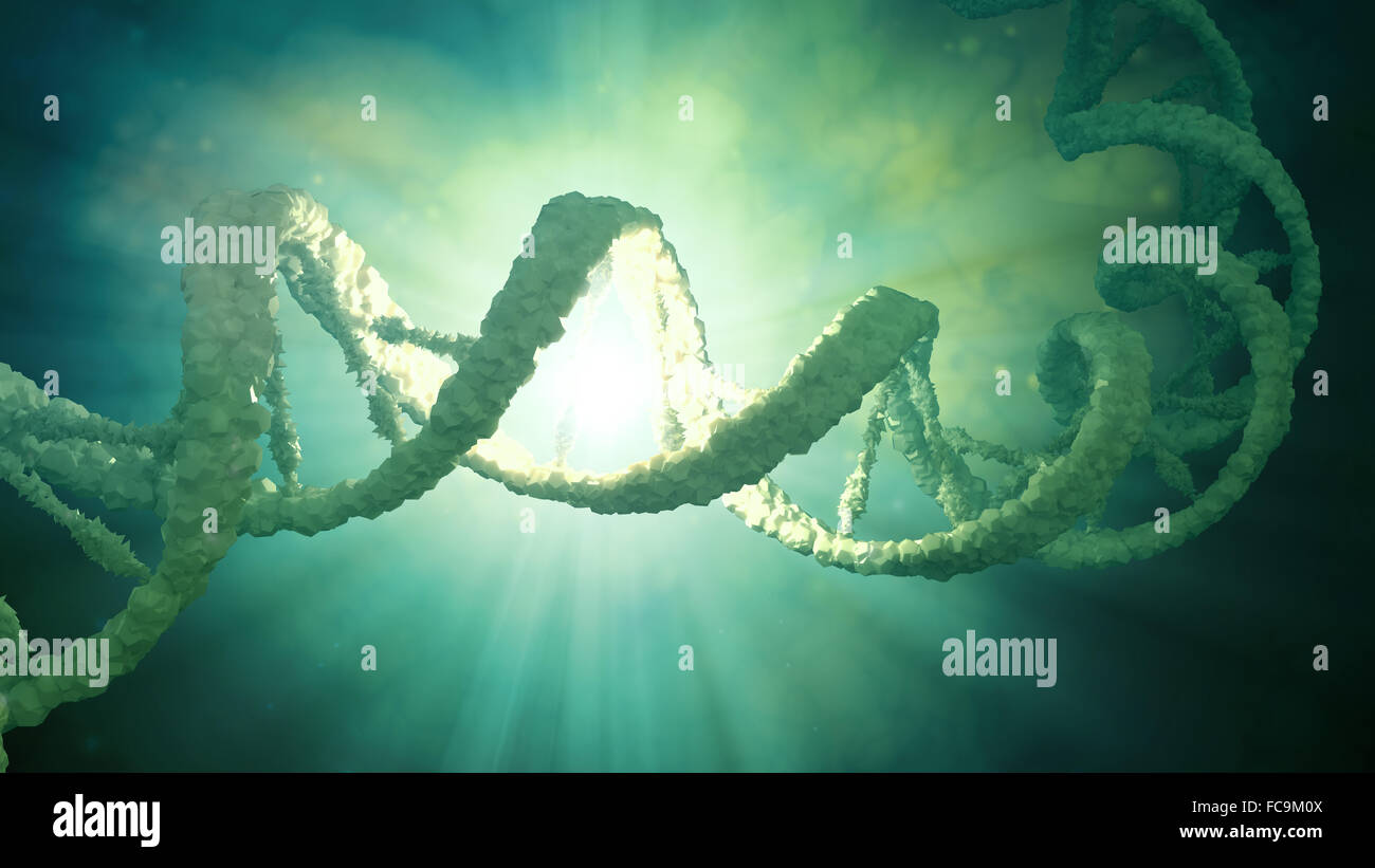 DNA strand model - genetics illustration - Stock Image