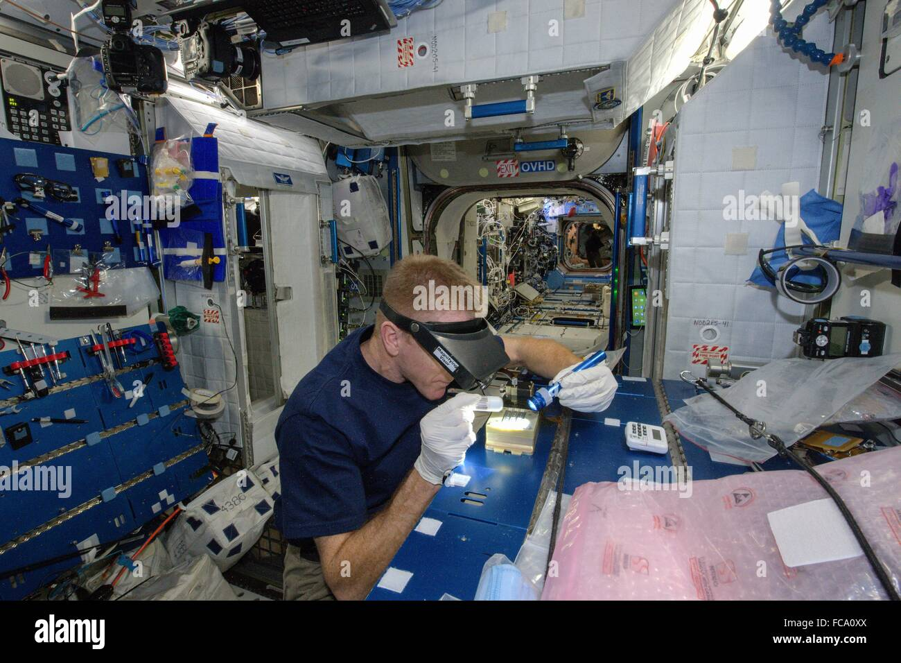 European Space Agency astronaut Tim Peake works on the Advanced Colloids Experiment 2 Hardware Configuration and - Stock Image