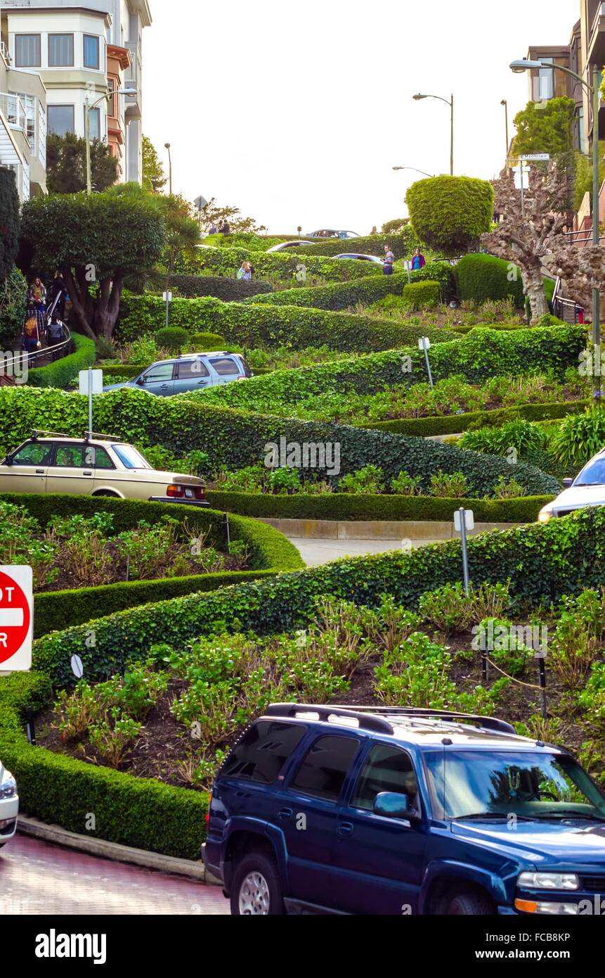The famous Lombard street on Russian Hill in San Francisco, California, United States of America. A view of the - Stock Image